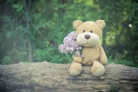 flowers teddy bear toy