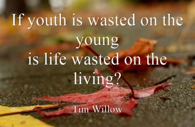 If-youth-is-wasted-on