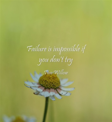 Failure-is-impossible-if